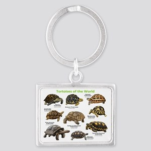 Tortoises of the World Landscape Keychain