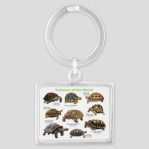 Tortoises of the World Landscape Keychain