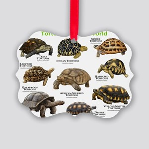 Tortoises of the World Picture Ornament