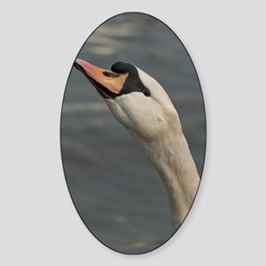 Swan Sticker (Oval)