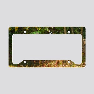 SUMMERS-LAST-DANCE-LAPTOP License Plate Holder