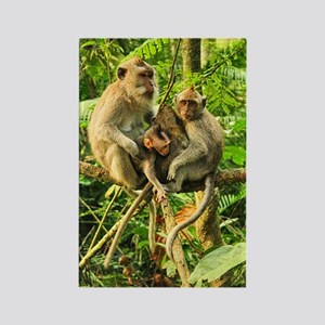 Togetherness on a Branch Rectangle Magnet