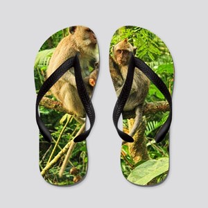 Togetherness on a Branch Flip Flops