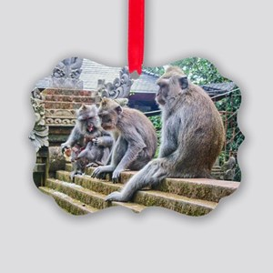 Hanging Out Picture Ornament