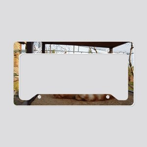 gingitoalet License Plate Holder