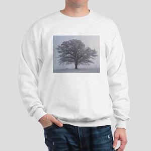 Tree of Light Sweatshirt