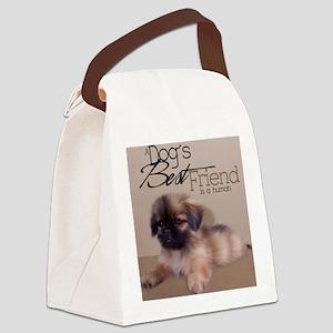 peki1_iphone_4_slider_case Canvas Lunch Bag