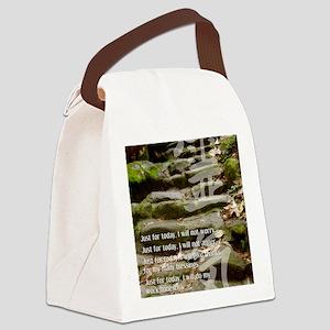 5 STEPS REIKI PRINCIPLES Canvas Lunch Bag