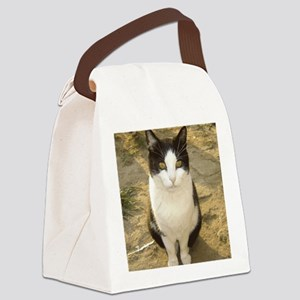 papuce Canvas Lunch Bag