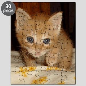 archiIpod Puzzle