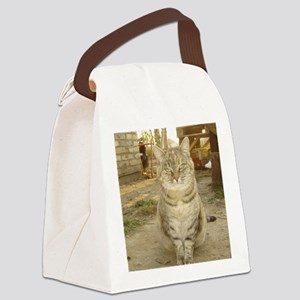 opetsleeve Canvas Lunch Bag