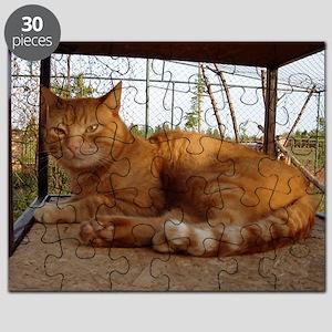 11.5x9gingi Puzzle
