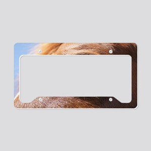 CC-eye-March-14-2012 of Goats License Plate Holder