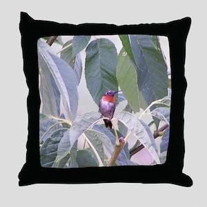 Humming bird Throw Pillow