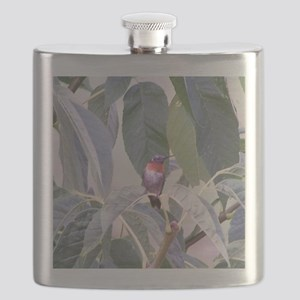 Humming bird Flask