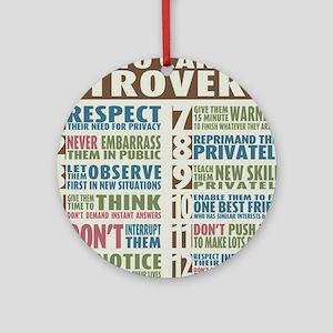 Introvert2 Round Ornament