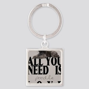 po_iphone_4_slider_case Square Keychain