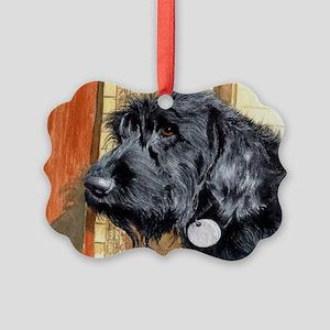 ralPC Picture Ornament