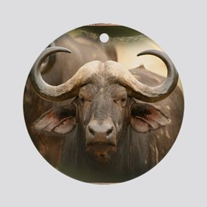 African Cape Buffalo Round Ornament