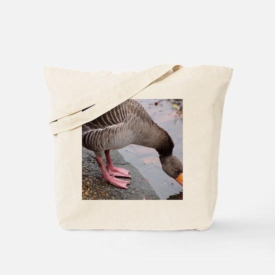 PC211734 Tote Bag