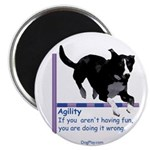 Have Fun in Agility Magnet