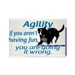 Have Fun in Agility Rectangle Magnet