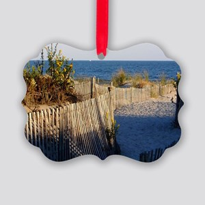 dune path Picture Ornament