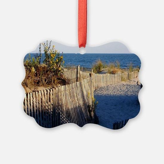 dune path Ornament