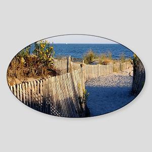 dune path Sticker (Oval)