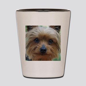 YorkieShowerC Shot Glass