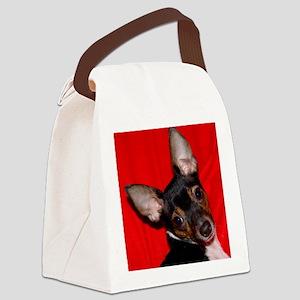 ToyFoxTerrierShower1 Canvas Lunch Bag