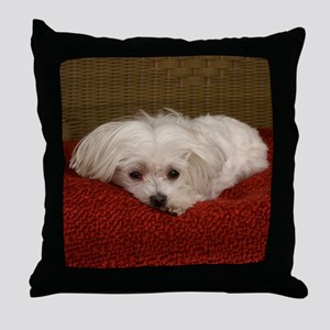 MalteseShower2 Throw Pillow