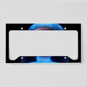 Blue Glass Shroom License Plate Holder