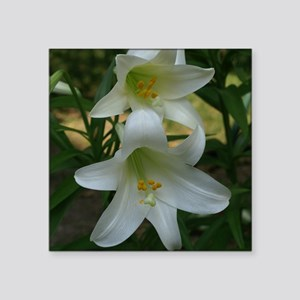 """EasterLily2Shower Square Sticker 3"""" x 3"""""""