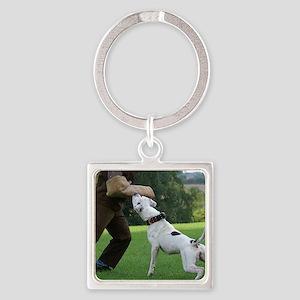 american bulldog b Square Keychain