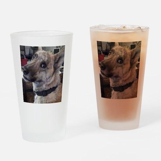 Youre Kiddin Me Drinking Glass