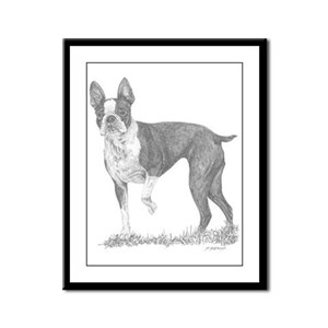 Boston Terrier - Dorrie Framed Panel Print