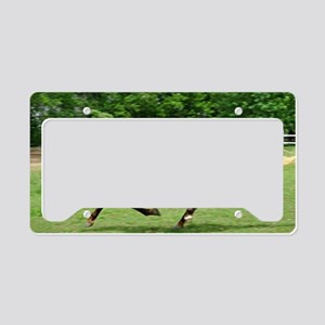 Rocky Way License Plate Holder