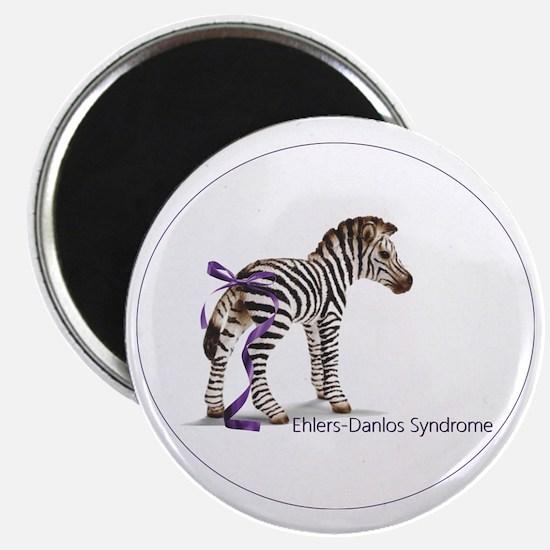 zebra with ribbon Oval Magnet