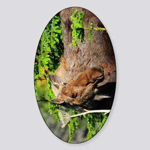 TabletCases_moose_1 Sticker (Oval)