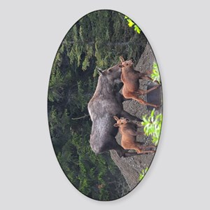 TabletCases_moose_5 Sticker (Oval)