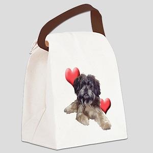 affenpinscherthree Canvas Lunch Bag
