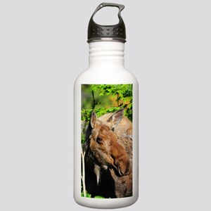 PhoneCase_moose_01 Stainless Water Bottle 1.0L