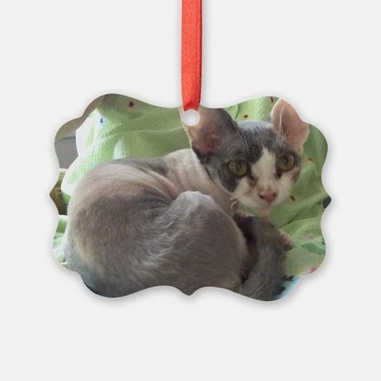PIXIE - DEVON REX Ornament