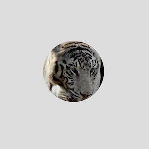 DSC_0296 Mini Button