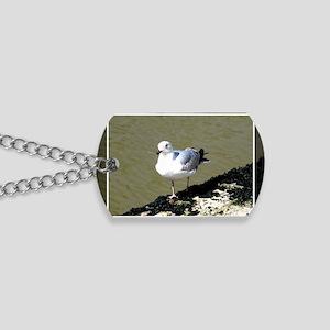 Seagull7 Dog Tags