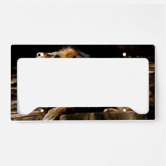 DSC_0314 License Plate Holder