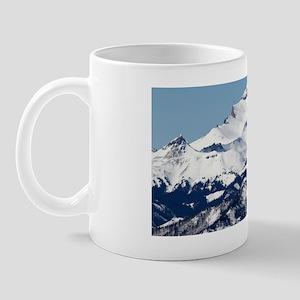 IMG_6605ps Mug