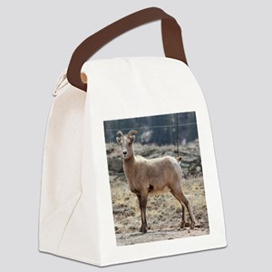 IMG_7441pssq Canvas Lunch Bag