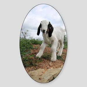 Kid Goat On Hill Sticker (Oval)
